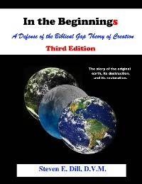 Cover In the Beginnings