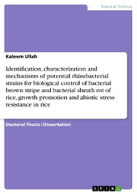 Cover Identification, characterization and mechanisms of potential rhizobacterial strains for biological control of bacterial brown stripe and bacterial sheath rot of rice, growth promotion and abiotic stress resistance in rice