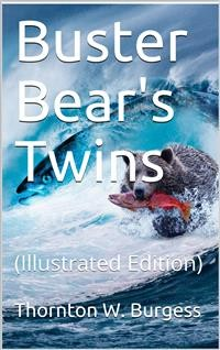 Cover Buster Bear's Twins