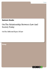 Cover On The Relationship Between Law And Society Today