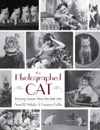 Cover The Photographed Cat