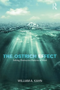 Cover Ostrich Effect