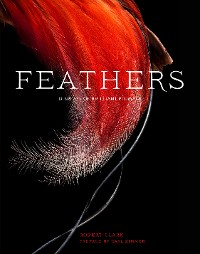 Cover Feathers