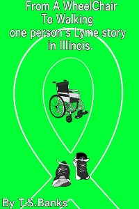 Cover From a wheelchair to walking one person's Lyme story in Illinois.