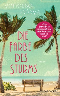 Cover Die Farbe des Sturms