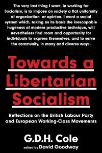 Cover Towards A Libertarian Socialism