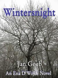 Cover Wintersnight