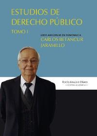 Cover Estudios en derecho público