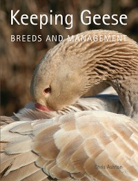 Cover Keeping Geese