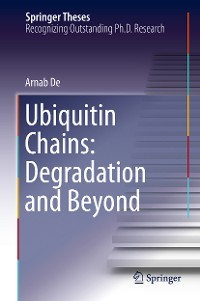 Cover Ubiquitin Chains: Degradation and Beyond