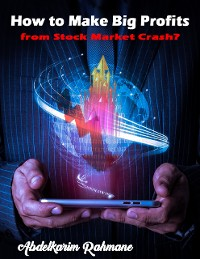 Cover How to Make Big Profits from Stock Market Crash?