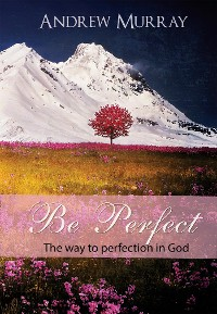 Cover Be Perfect - The way to perfection in God