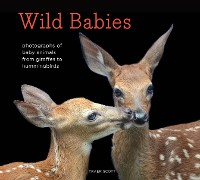 Cover Wild Babies