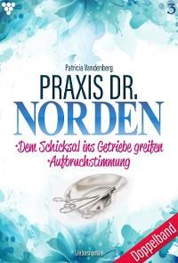 Cover Praxis Dr. Norden Doppelband 3 – Arztroman