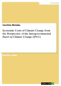 Cover Economic Costs of Climate Change from the Perspective of the Intergovernmental Panel on Climate Change (IPCC)