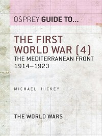 Cover The First World War, Volume 4