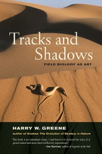 Cover Tracks and Shadows