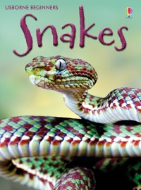 Cover Snakes