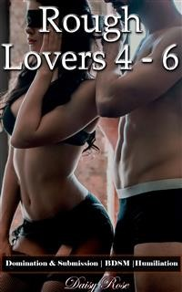 Cover Rough Lovers 4 - 6