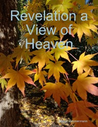 Cover Revelation a View of Heaven