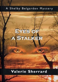 Cover Eyes of a Stalker