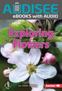 Cover Exploring Flowers