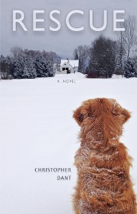 Cover Rescue - A Novel