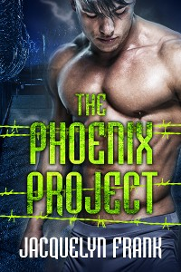 Cover The Phoenix Project