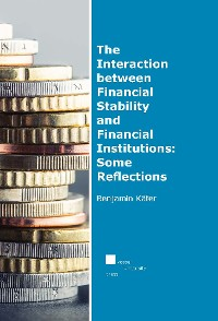 Cover The Interaction between Financial Stability and Financial Institutions: Some Reflections