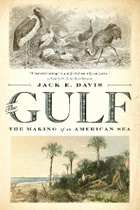 Cover The Gulf: The Making of An American Sea
