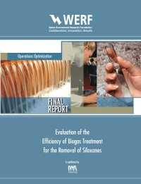 Cover Evaluation of the Efficiency of Biogas Treatment for the Removal of Siloxanes