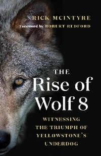 Cover The Rise of Wolf 8