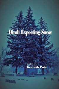 Cover Dindi Expecting Snow