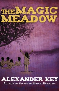 Cover Magic Meadow