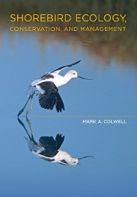 Cover Shorebird Ecology, Conservation, and Management