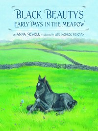 Cover Black Beauty's Early Days in the Meadow