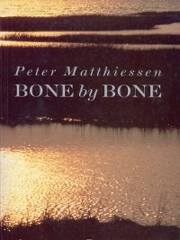 Cover Bone by Bone