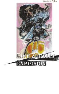 Cover Eine Zufallsexplosion