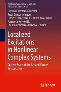 Cover Localized Excitations in Nonlinear Complex Systems
