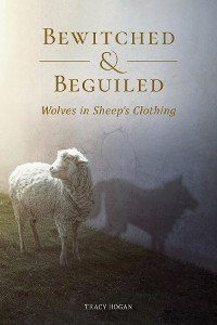 Cover Bewitched and Beguiled