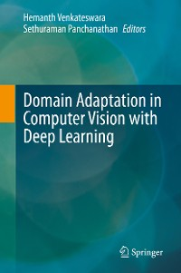 Cover Domain Adaptation in Computer Vision with Deep Learning