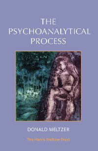 Cover The Psychoanalytical Process
