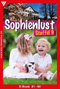 Cover Sophienlust Staffel 9 – Familienroman