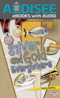 Cover Silver and Gold Everywhere