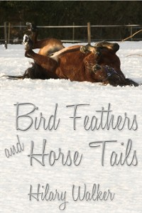 Cover Bird Feathers and Horse Tails