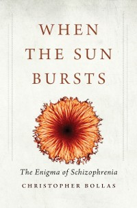 Cover When the Sun Bursts