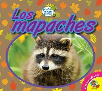 Cover Los mapaches