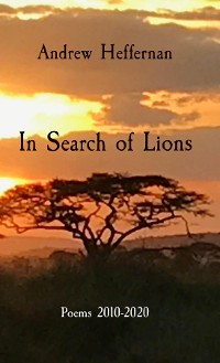 Cover In Search of Lions