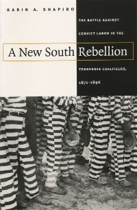 Cover A New South Rebellion
