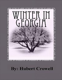 Cover Winter In Georgia